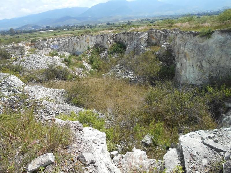 abióticos en los ecosistemas