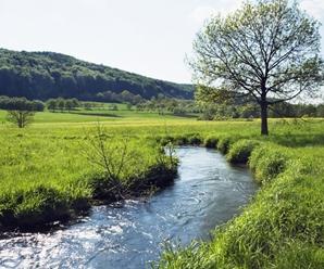 ¿Cuáles son las características físicas de un Río? – Las partes de un Río –