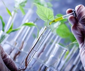 Importancia de la biología en la vida cotidiana