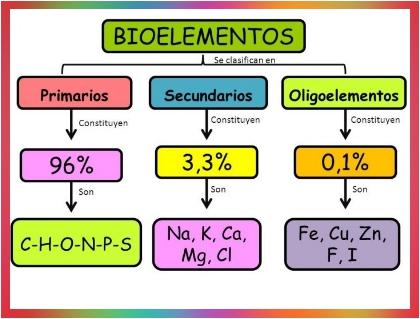 Los bioelementos - Imagen