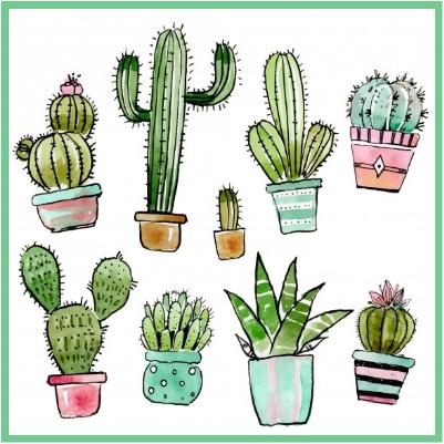 Adaptación del cactus Imagen.